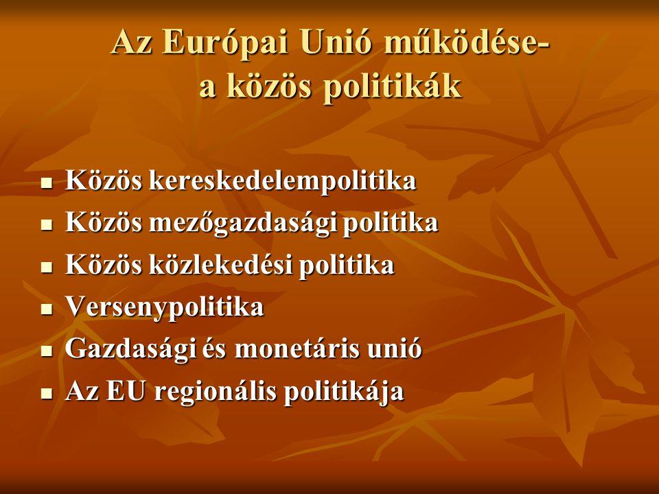 Az Európai Unió működése- a közös politikák