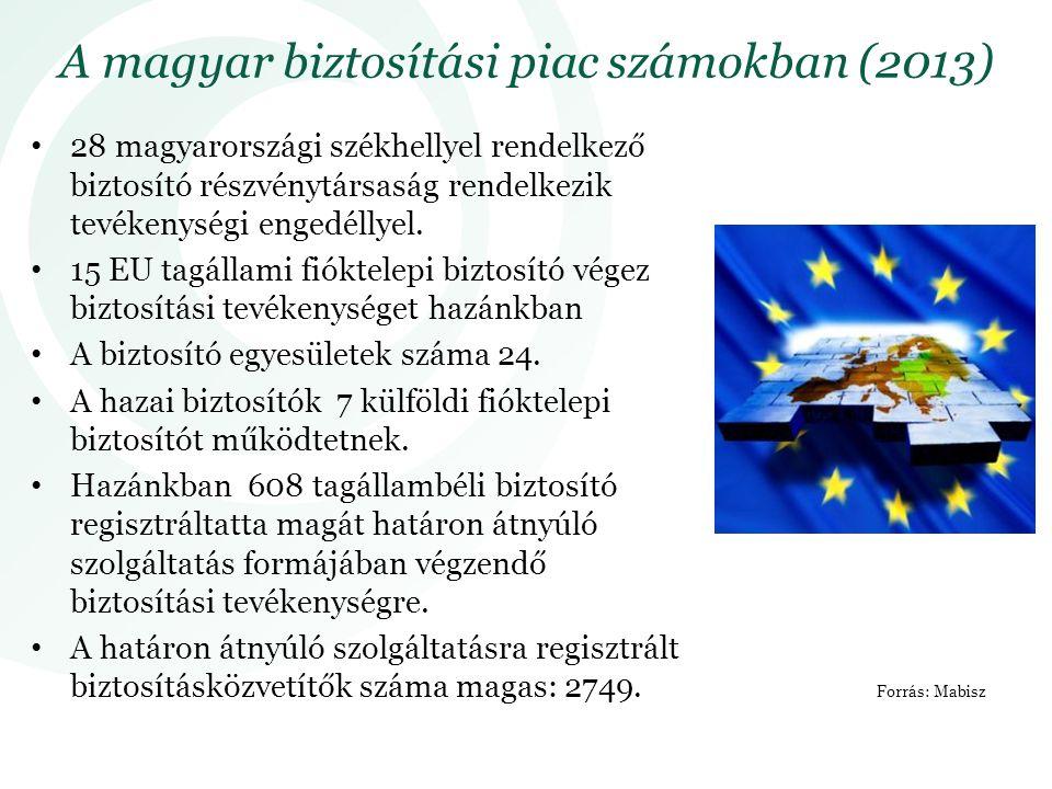 A magyar biztosítási piac számokban (2013)