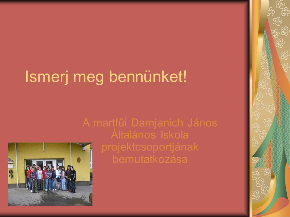 Ismerj meg bennünket! A martfűi Damjanich János Általános Iskola projektcsoportjának bemutatkozása