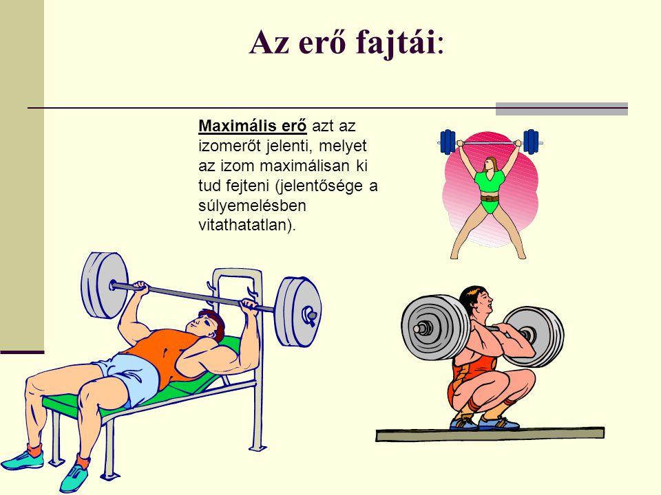 Az erő fajtái: Maximális erő azt az izomerőt jelenti, melyet az izom maximálisan ki tud fejteni (jelentősége a súlyemelésben vitathatatlan).