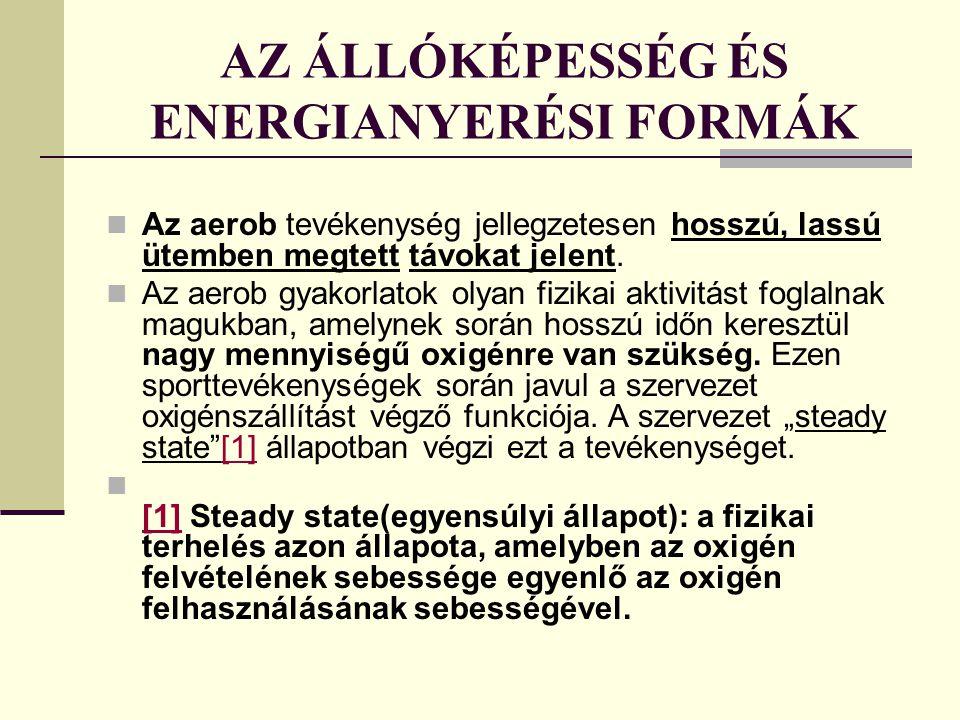 AZ ÁLLÓKÉPESSÉG ÉS ENERGIANYERÉSI FORMÁK