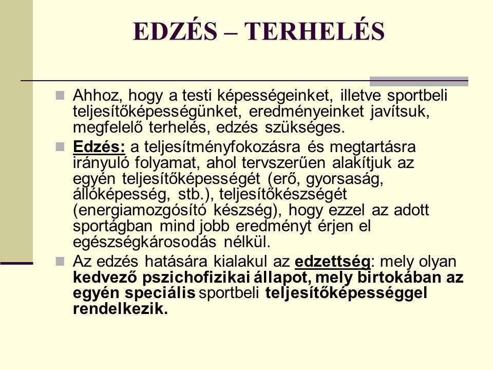 EDZÉS – TERHELÉS