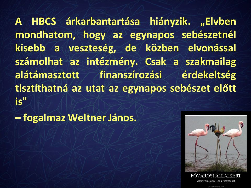 A HBCS árkarbantartása hiányzik