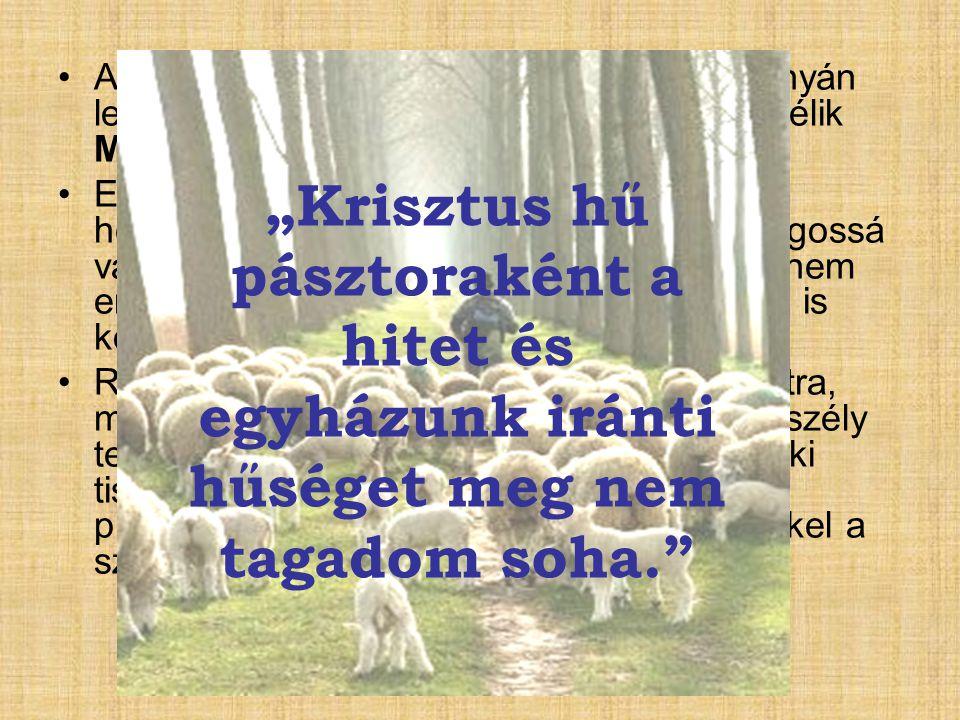 """""""Krisztus hű pásztoraként a hitet és"""