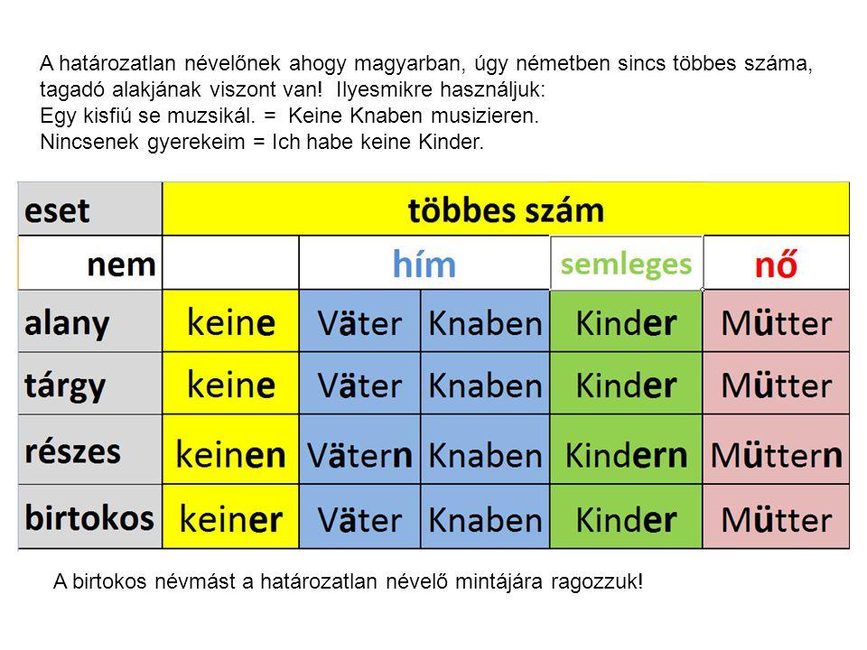 A határozatlan névelőnek ahogy magyarban, úgy németben sincs többes száma, tagadó alakjának viszont van! Ilyesmikre használjuk: Egy kisfiú se muzsikál. = Keine Knaben musizieren. Nincsenek gyerekeim = Ich habe keine Kinder.