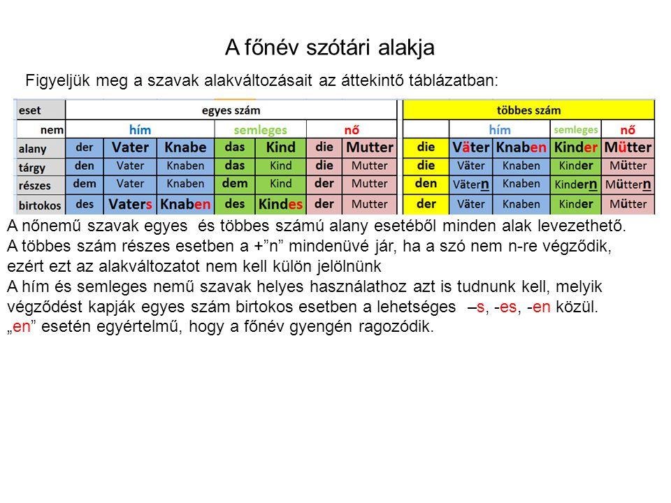 A főnév szótári alakja Figyeljük meg a szavak alakváltozásait az áttekintő táblázatban: