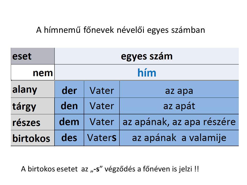 A hímnemű főnevek névelői egyes számban