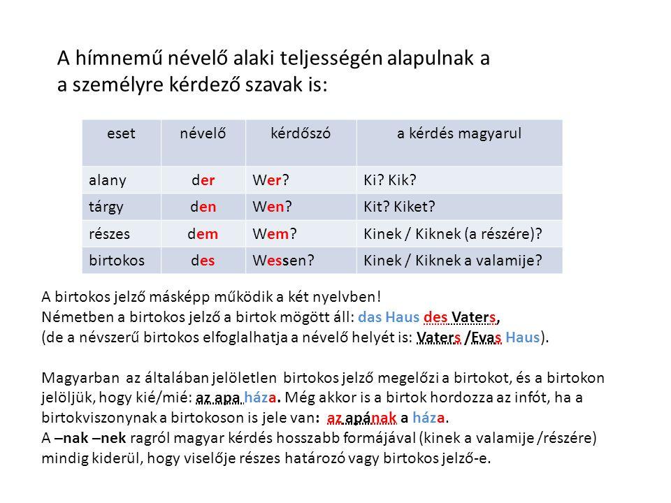 A hímnemű névelő alaki teljességén alapulnak a a személyre kérdező szavak is: