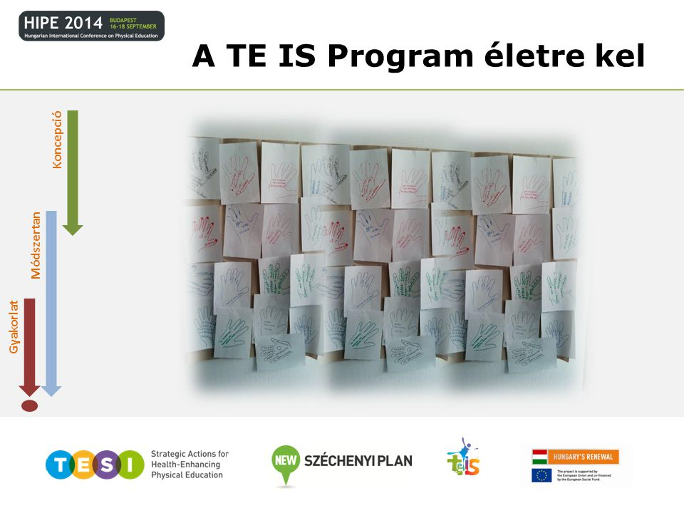 A TE IS Program életre kel