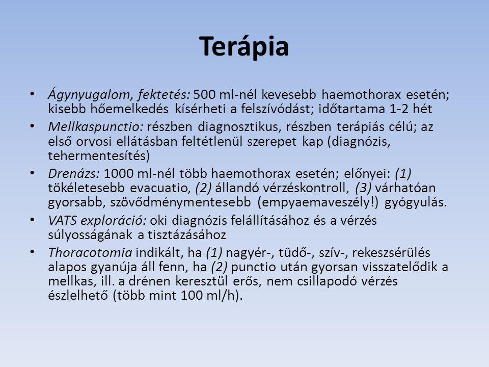 Terápia Ágynyugalom, fektetés: 500 ml-nél kevesebb haemothorax esetén; kisebb hőemelkedés kísérheti a felszívódást; időtartama 1-2 hét.