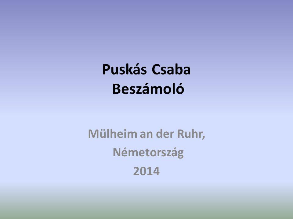 Puskás Csaba Beszámoló