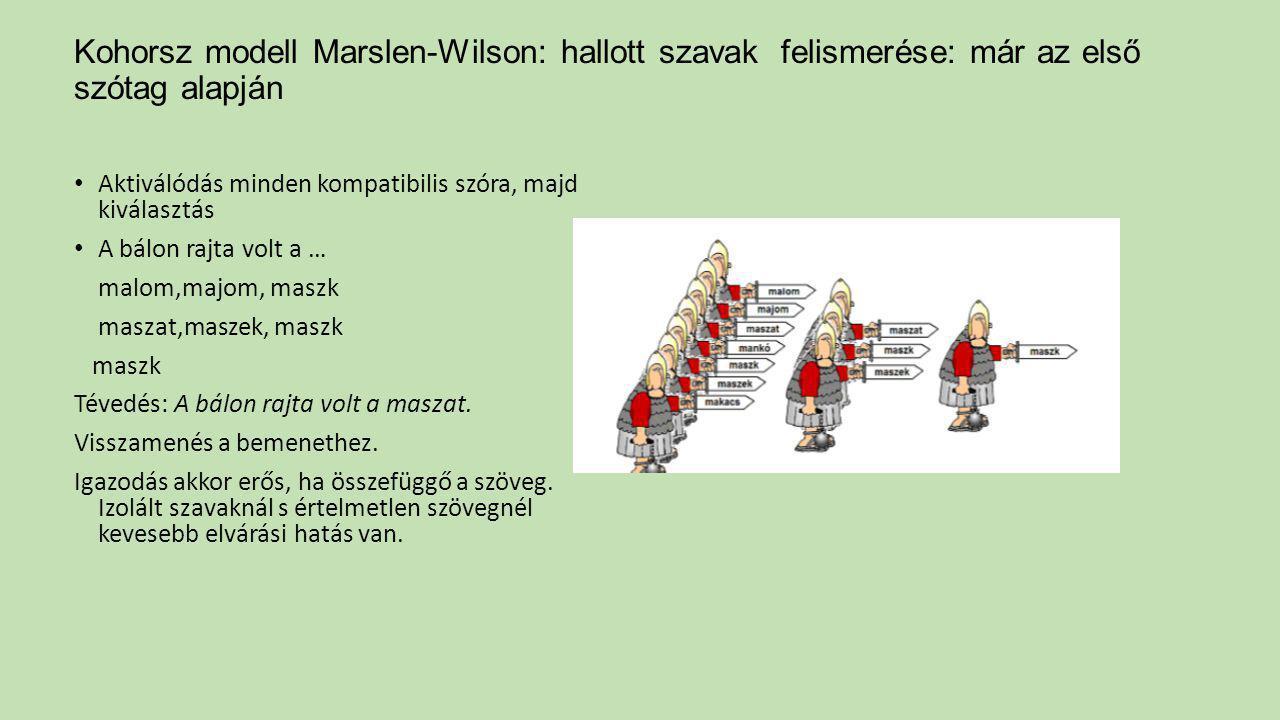 Kohorsz modell Marslen-Wilson: hallott szavak felismerése: már az első szótag alapján