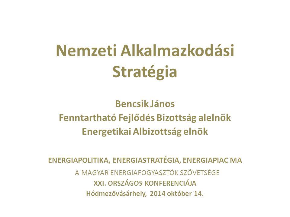Nemzeti Alkalmazkodási Stratégia