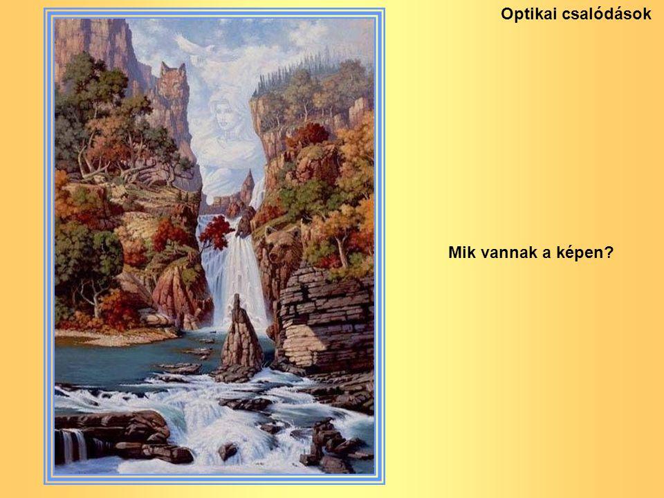 Optikai csalódások Mik vannak a képen