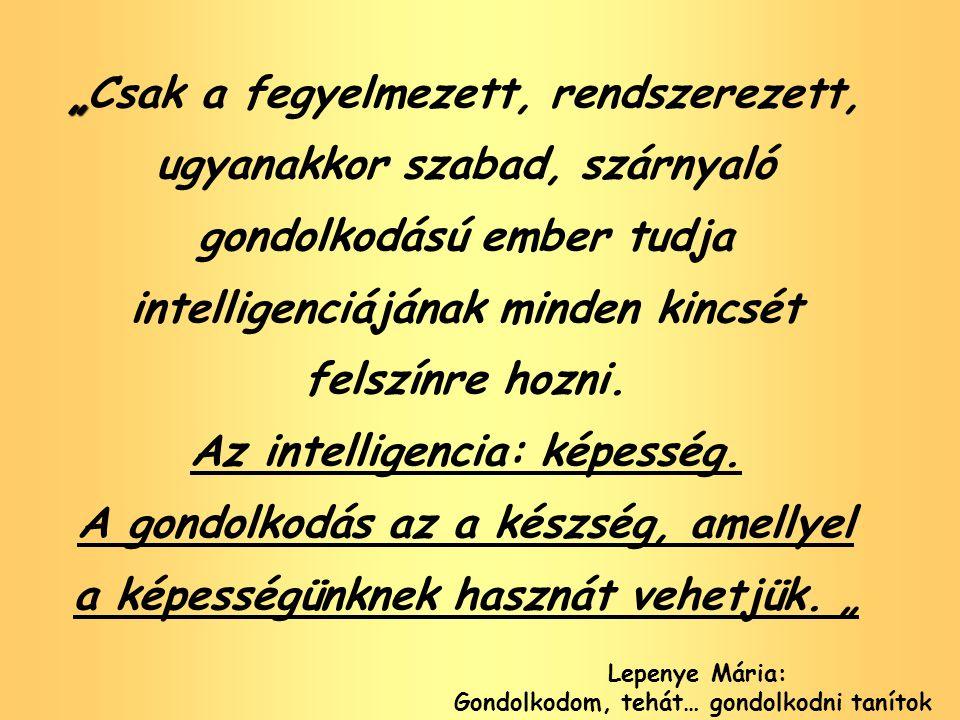 Az intelligencia: képesség. Gondolkodom, tehát… gondolkodni tanítok