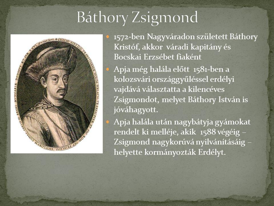 Báthory Zsigmond 1572-ben Nagyváradon született Báthory Kristóf, akkor váradi kapitány és Bocskai Erzsébet fiaként.
