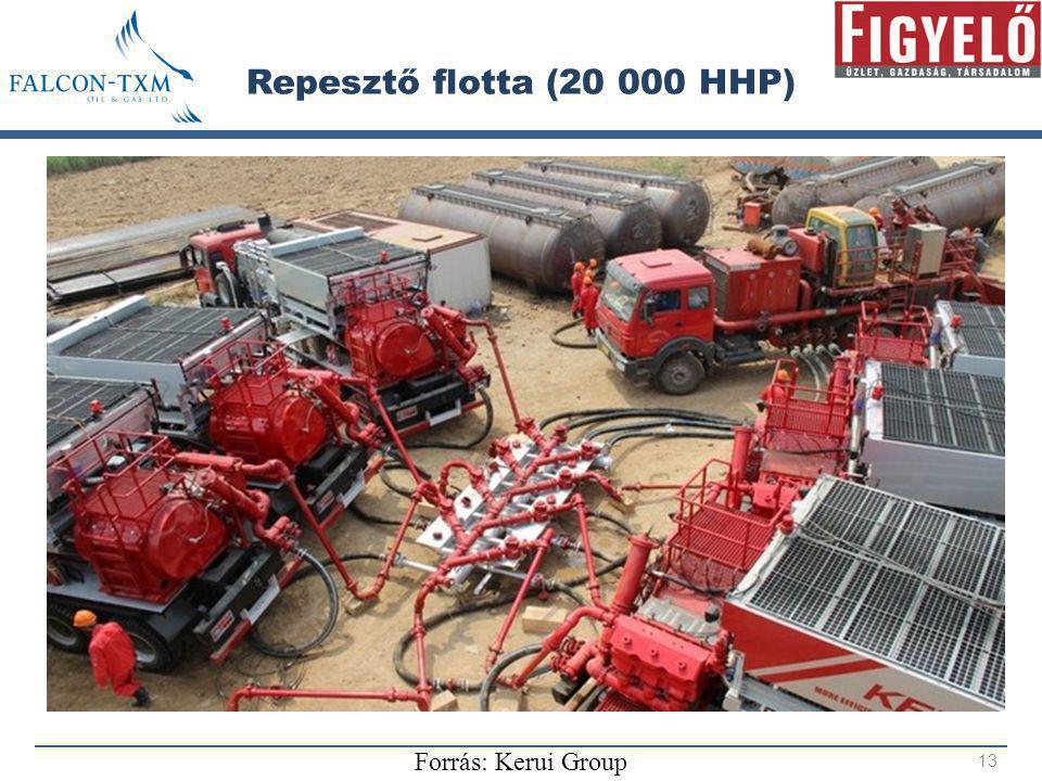 Repesztő flotta (20 000 HHP) Forrás: Kerui Group
