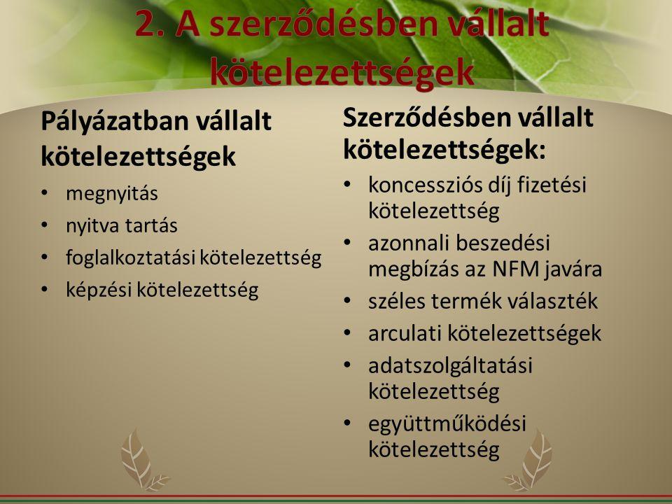 2. A szerződésben vállalt kötelezettségek