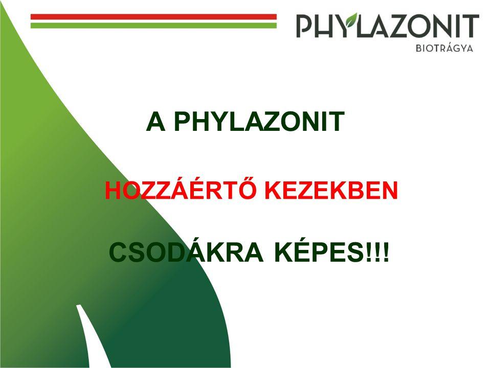 A PHYLAZONIT CSODÁKRA KÉPES!!!