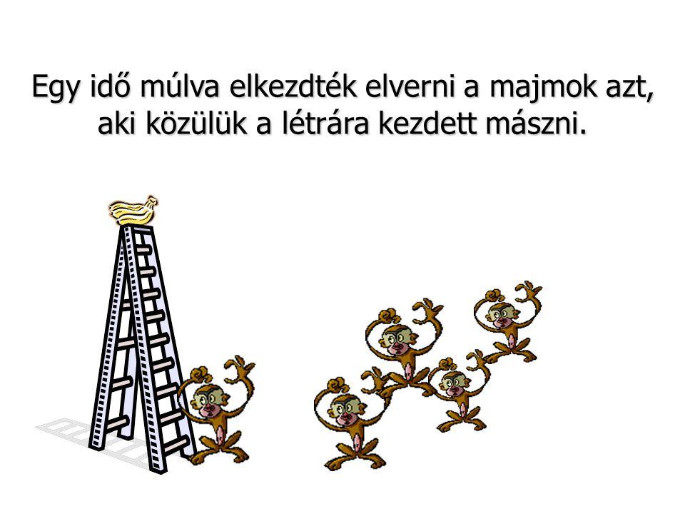 Egy idő múlva elkezdték elverni a majmok azt, aki közülük a létrára kezdett mászni.
