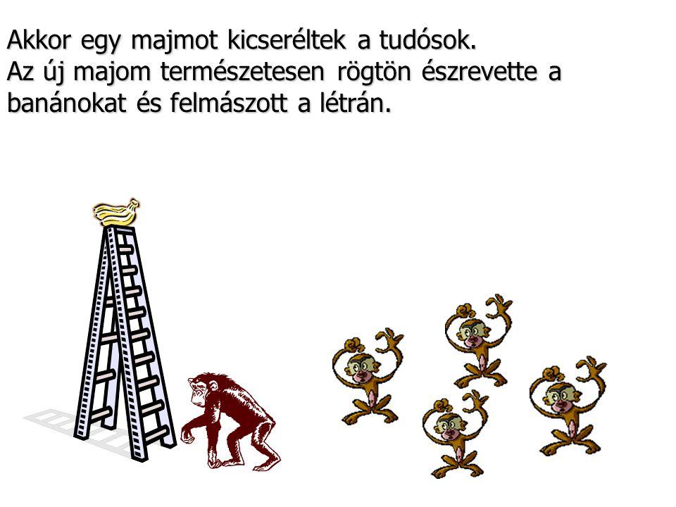 Akkor egy majmot kicseréltek a tudósok.