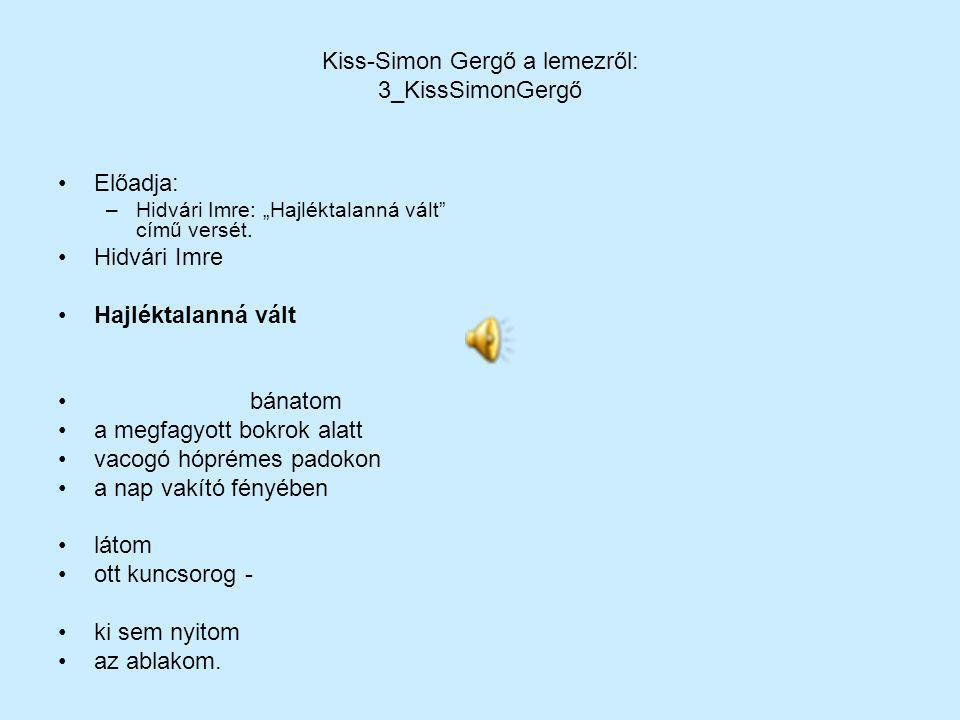 Kiss-Simon Gergő a lemezről: 3_KissSimonGergő