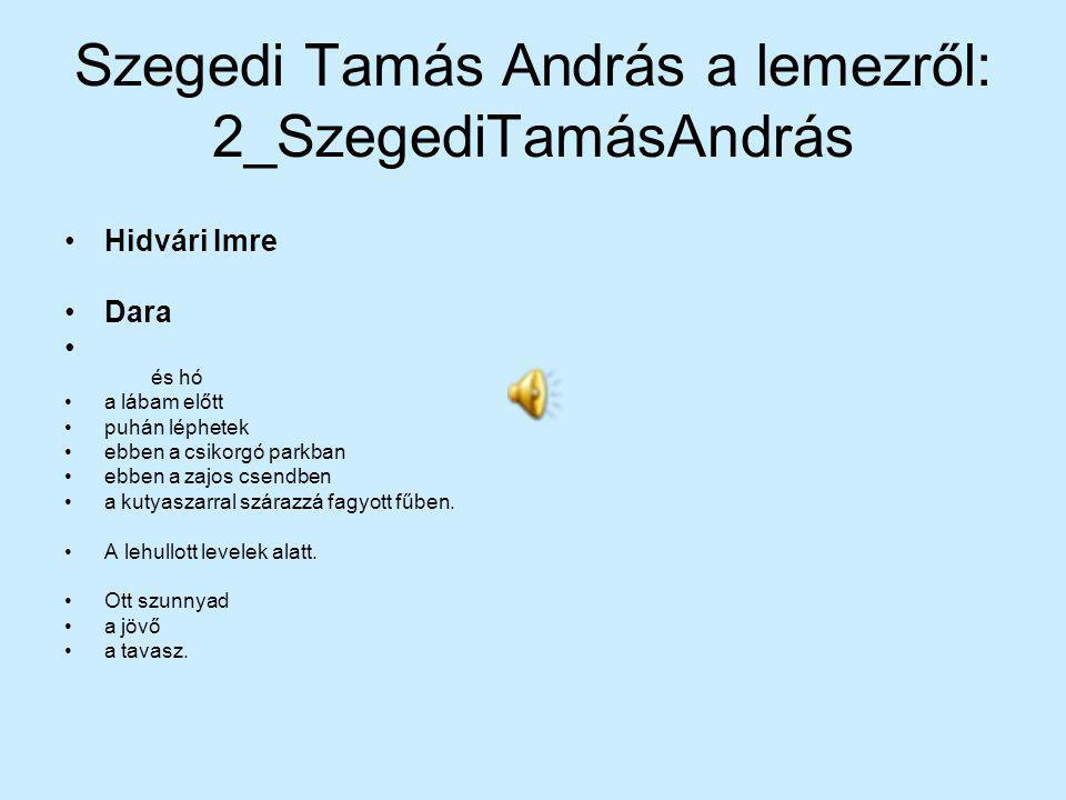 Szegedi Tamás András a lemezről: 2_SzegediTamásAndrás