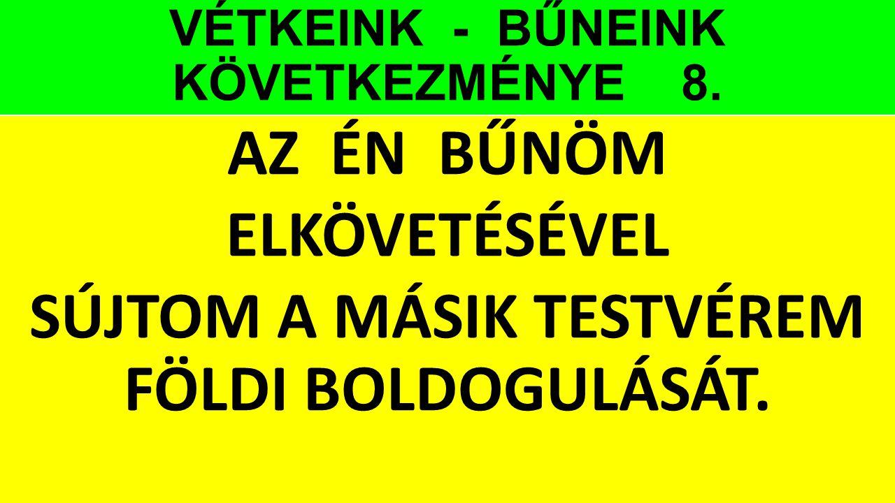 VÉTKEINK - BŰNEINK KÖVETKEZMÉNYE 8.