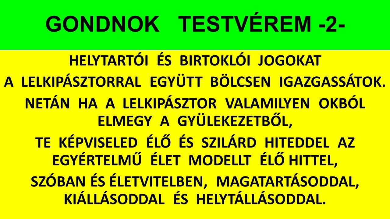 GONDNOK TESTVÉREM -2-