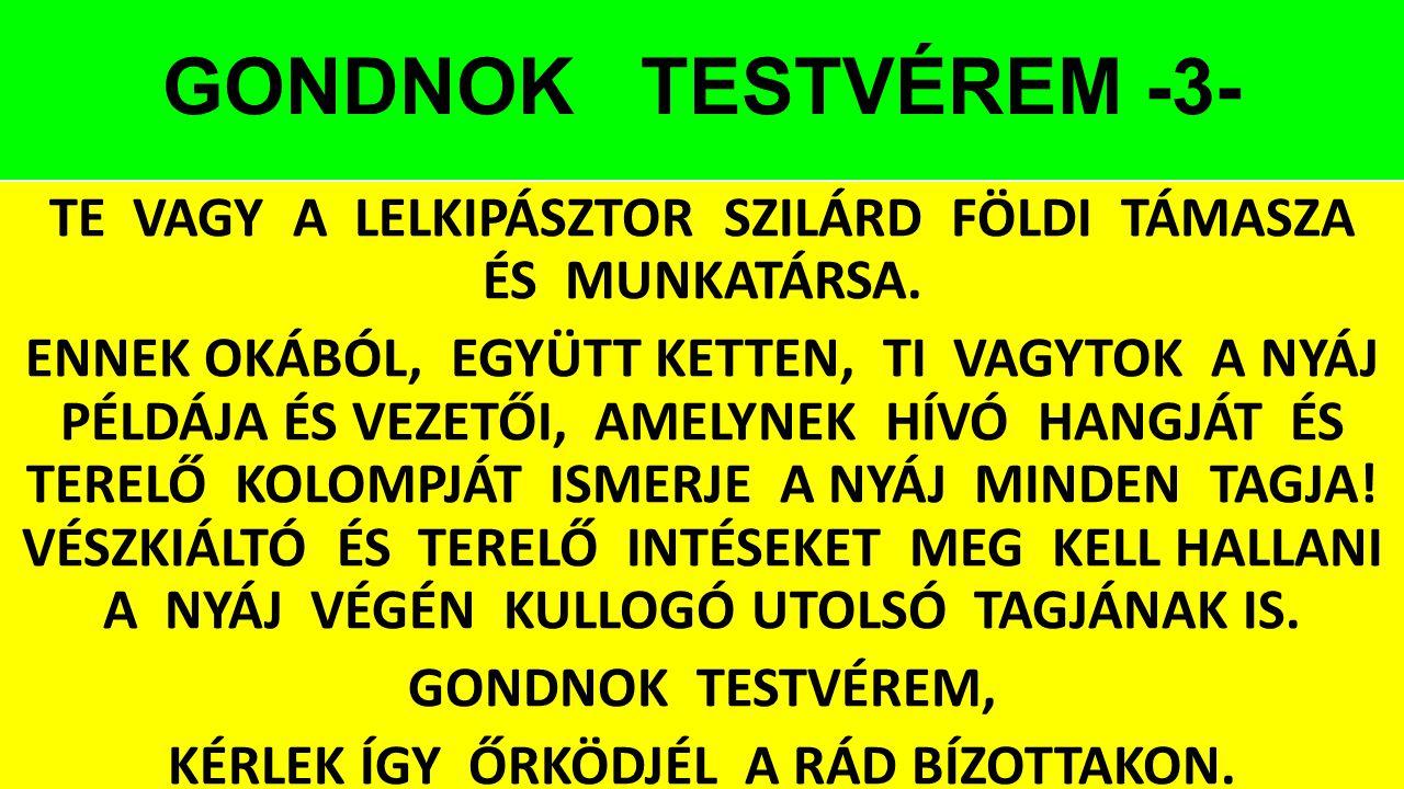 GONDNOK TESTVÉREM -3-