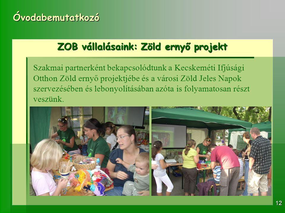 ZOB vállalásaink: Zöld ernyő projekt