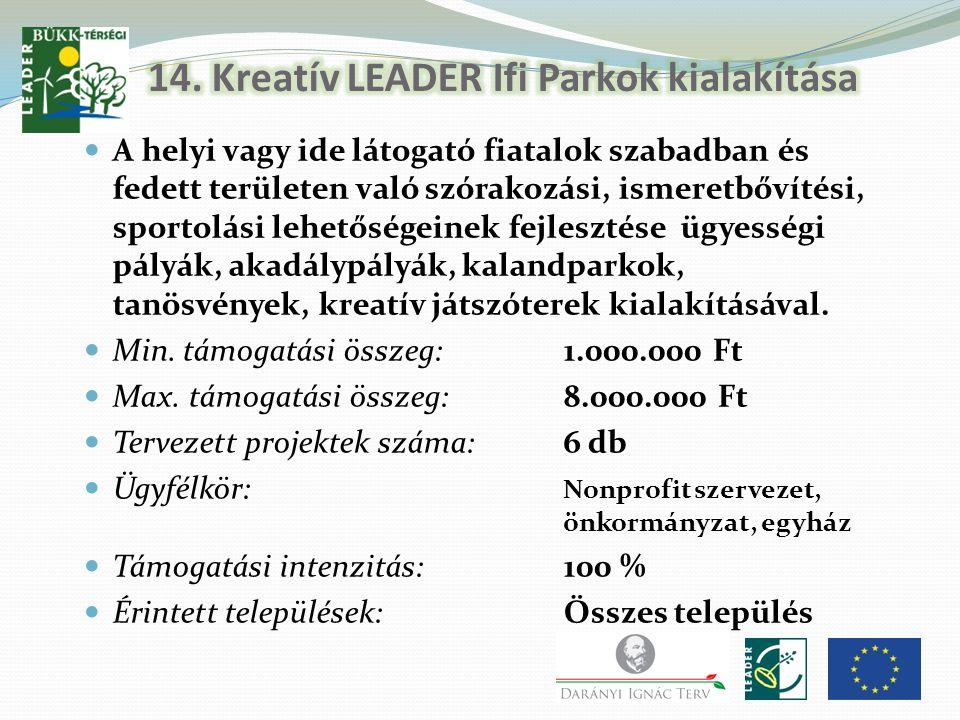 14. Kreatív LEADER Ifi Parkok kialakítása