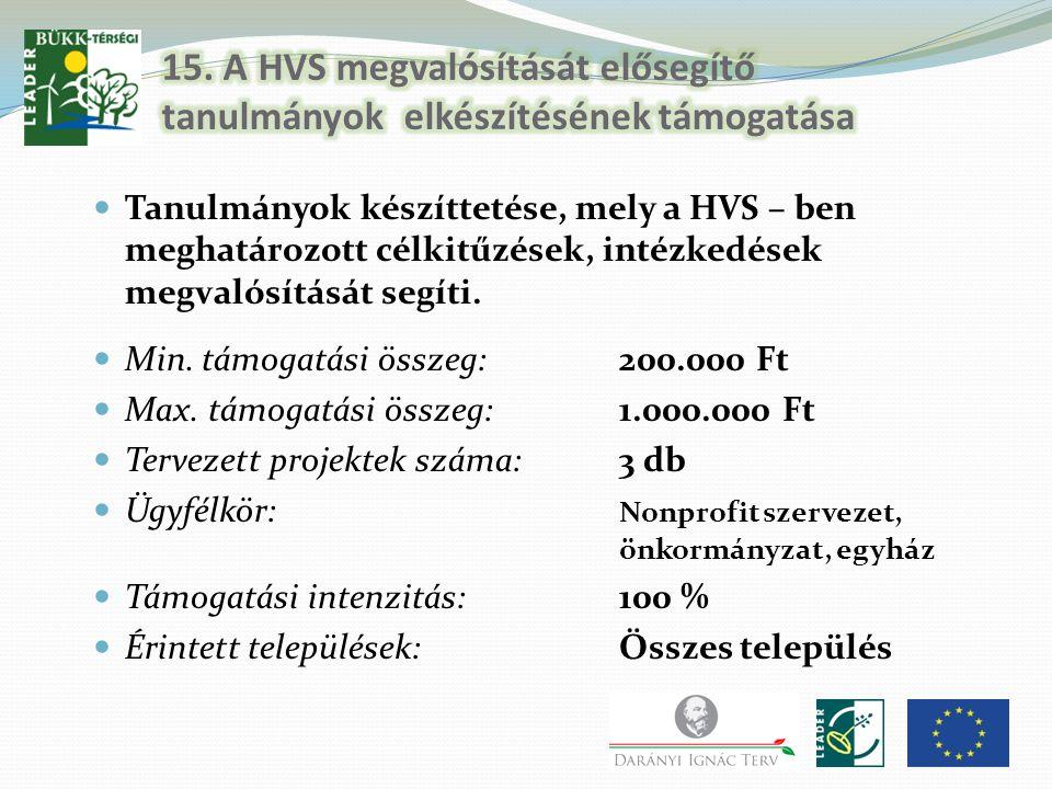 15. A HVS megvalósítását elősegítő tanulmányok elkészítésének támogatása