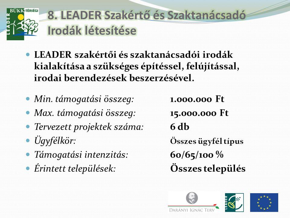 8. LEADER Szakértő és Szaktanácsadó Irodák létesítése