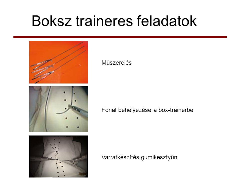 Boksz traineres feladatok