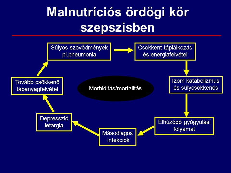 Malnutríciós ördögi kör szepszisben