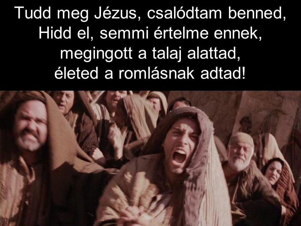 Tudd meg Jézus, csalódtam benned, Hidd el, semmi értelme ennek, megingott a talaj alattad, életed a romlásnak adtad!