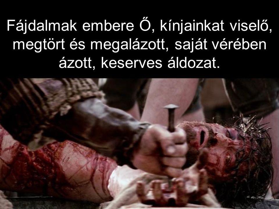 Fájdalmak embere Ő, kínjainkat viselő, megtört és megalázott, saját vérében ázott, keserves áldozat.