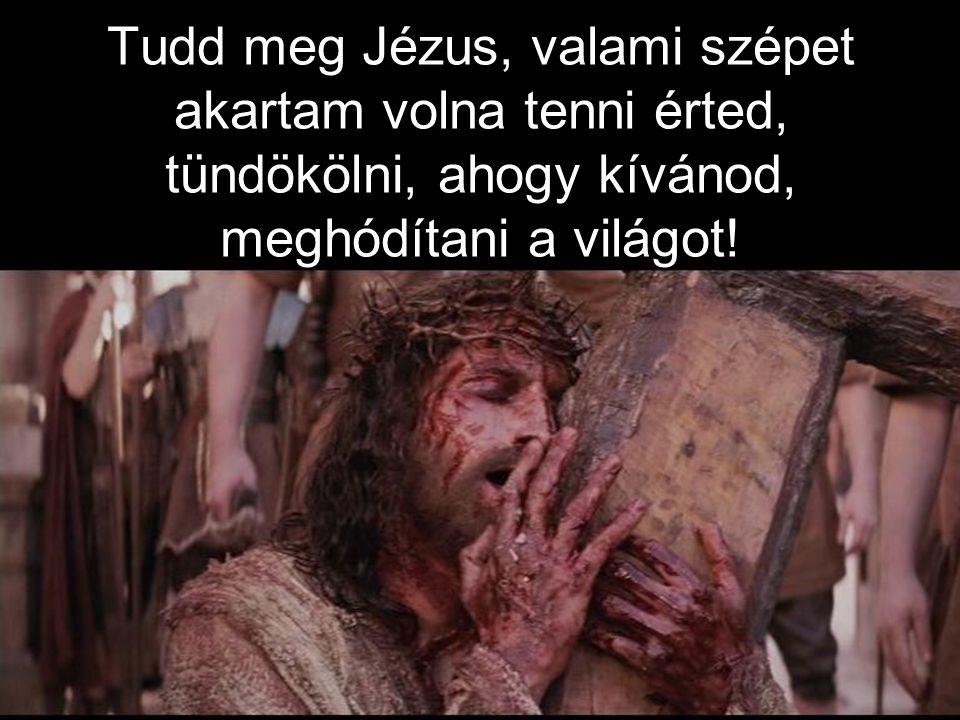 Tudd meg Jézus, valami szépet akartam volna tenni érted, tündökölni, ahogy kívánod, meghódítani a világot!