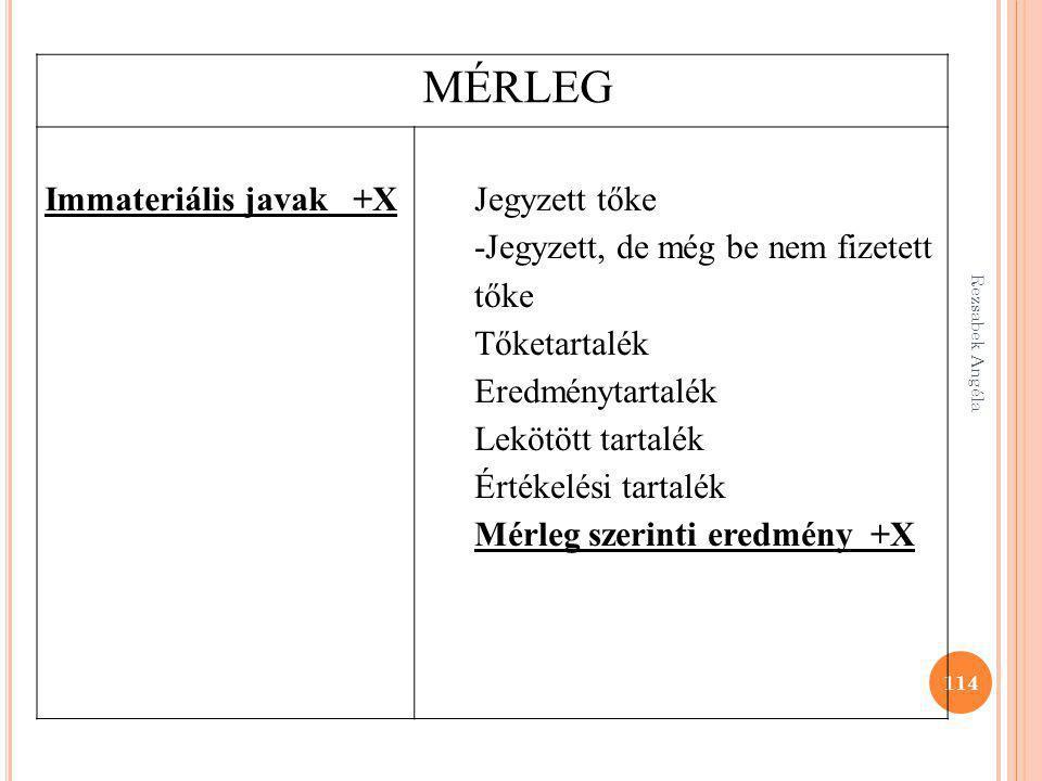 MÉRLEG Immateriális javak +X Jegyzett tőke
