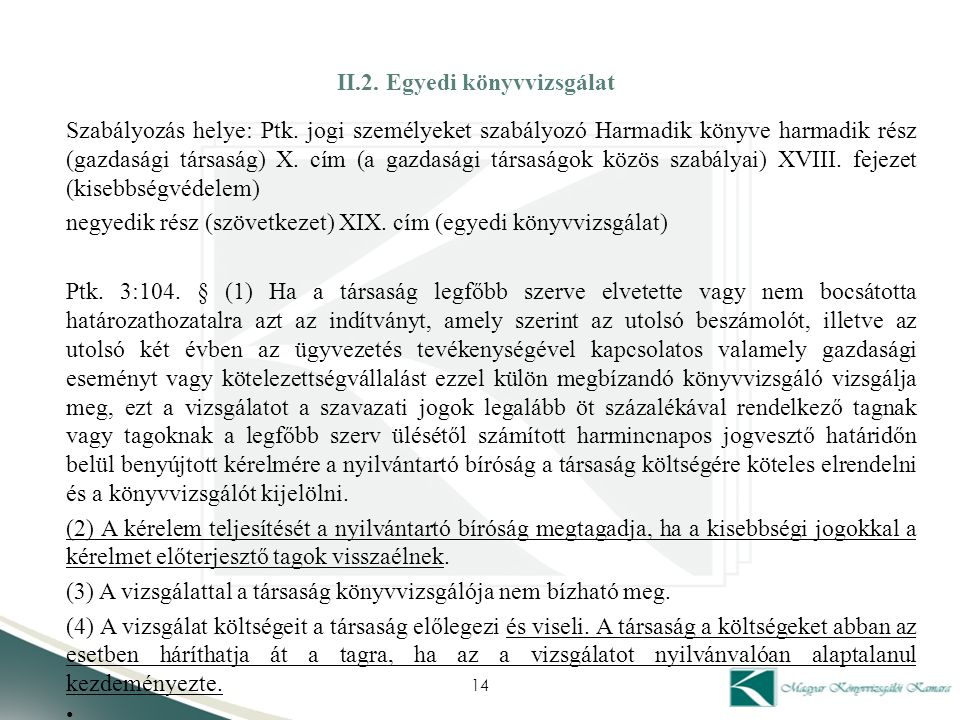 II.2. Egyedi könyvvizsgálat
