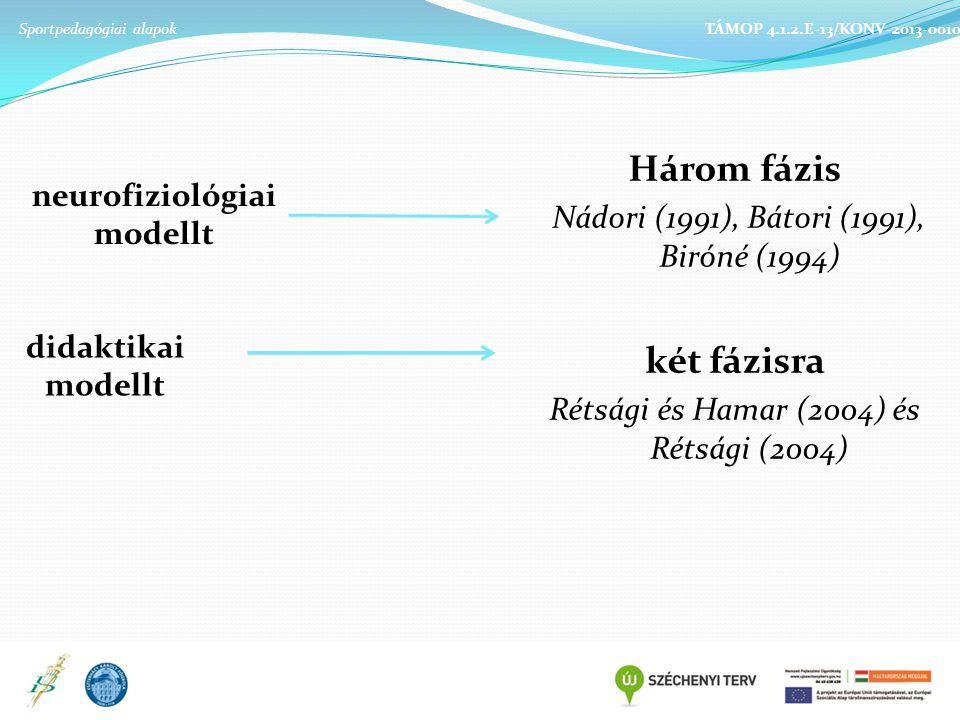 neurofiziológiai modellt