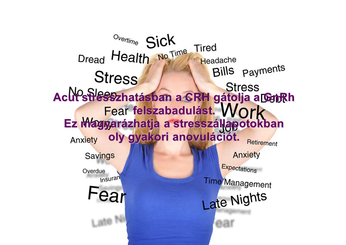 Acut stresszhatásban a CRH gátolja a GnRh felszabadulást.