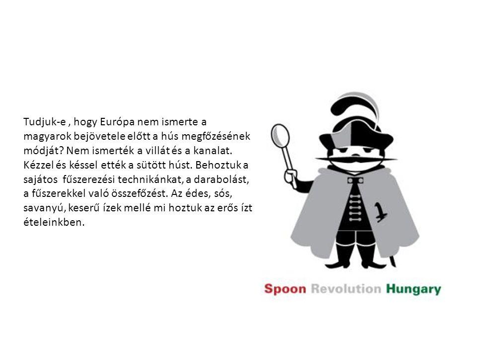 Tudjuk-e , hogy Európa nem ismerte a magyarok bejövetele előtt a hús megfőzésének módját.