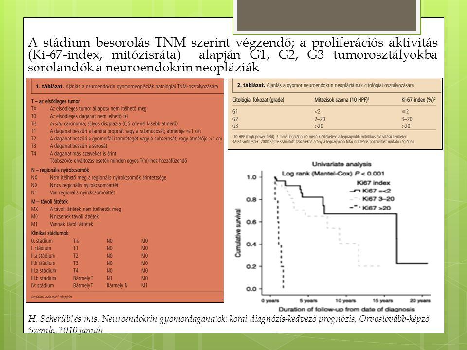 A stádium besorolás TNM szerint végzendő; a proliferációs aktivitás (Ki-67-index, mitózisráta) alapján G1, G2, G3 tumorosztályokba sorolandók a neuroendokrin neopláziák