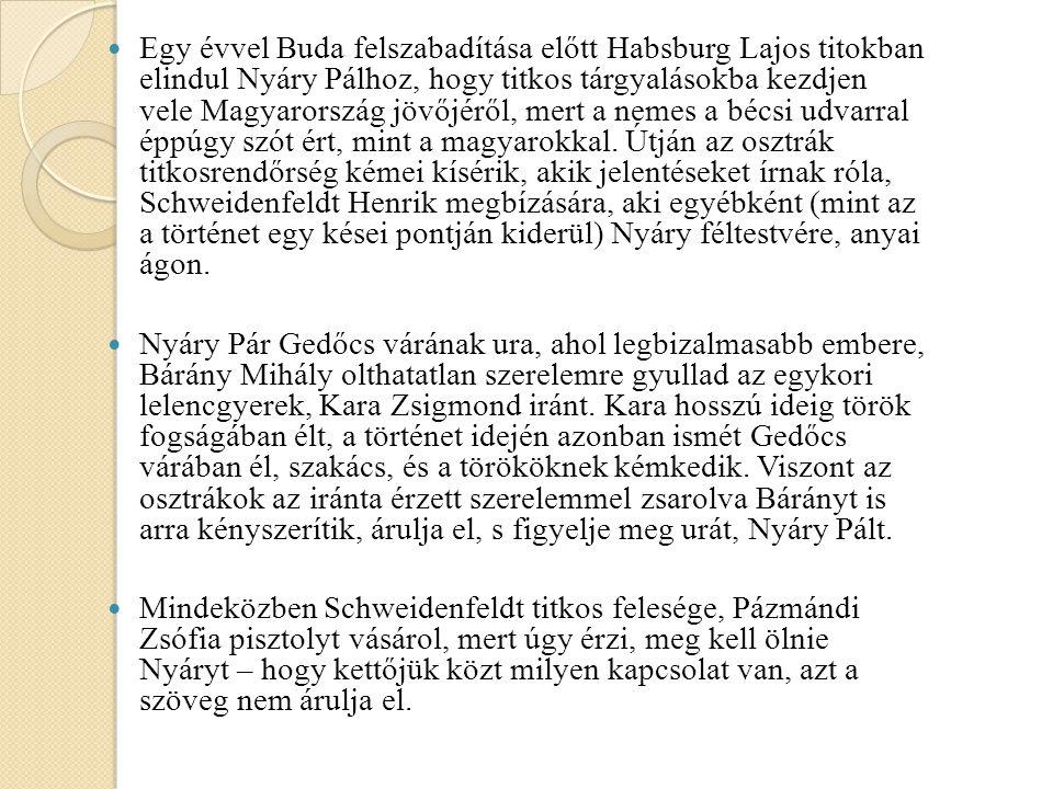 Egy évvel Buda felszabadítása előtt Habsburg Lajos titokban elindul Nyáry Pálhoz, hogy titkos tárgyalásokba kezdjen vele Magyarország jövőjéről, mert a nemes a bécsi udvarral éppúgy szót ért, mint a magyarokkal. Útján az osztrák titkosrendőrség kémei kísérik, akik jelentéseket írnak róla, Schweidenfeldt Henrik megbízására, aki egyébként (mint az a történet egy kései pontján kiderül) Nyáry féltestvére, anyai ágon.
