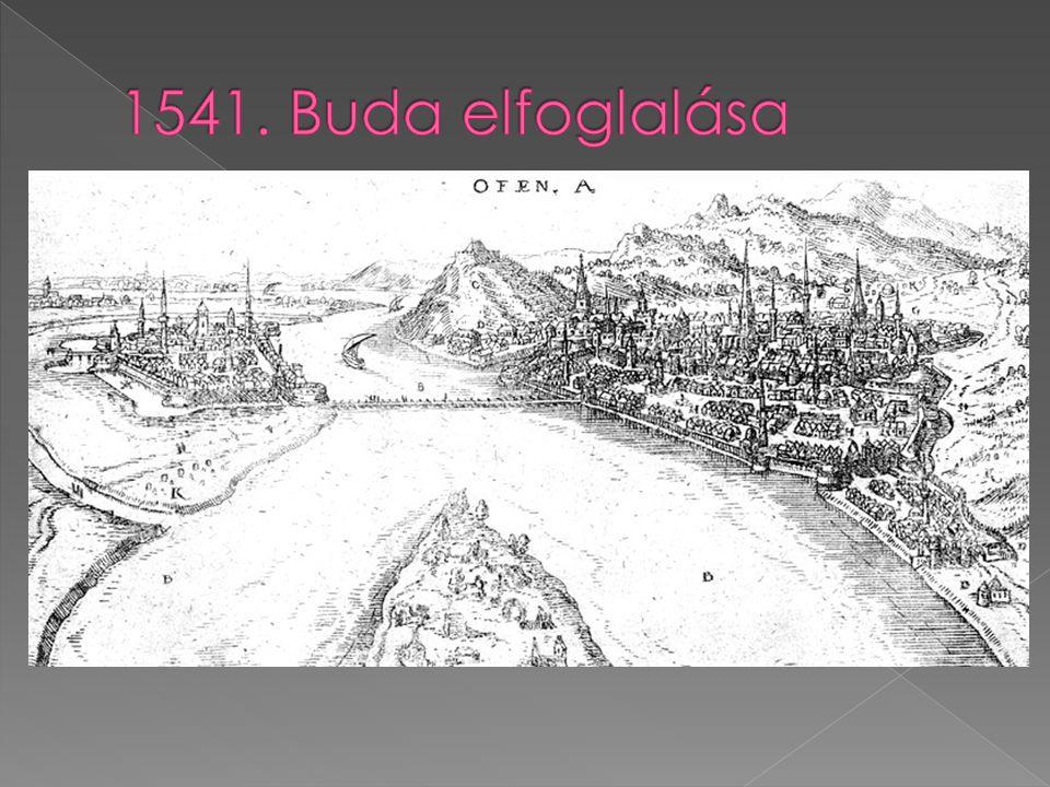 1541. Buda elfoglalása
