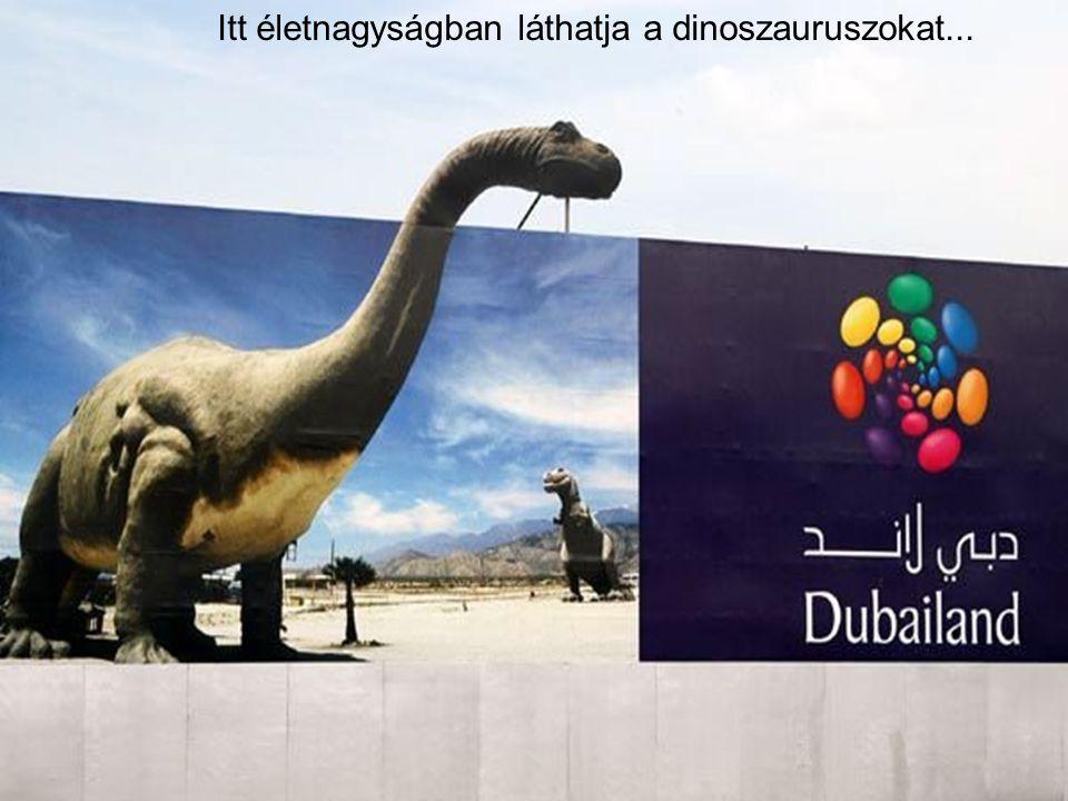 Itt életnagyságban láthatja a dinoszauruszokat...