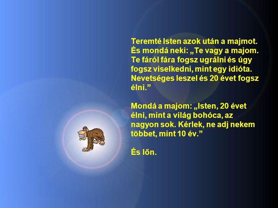 """Teremté Isten azok után a majmot. És mondá neki: """"Te vagy a majom"""