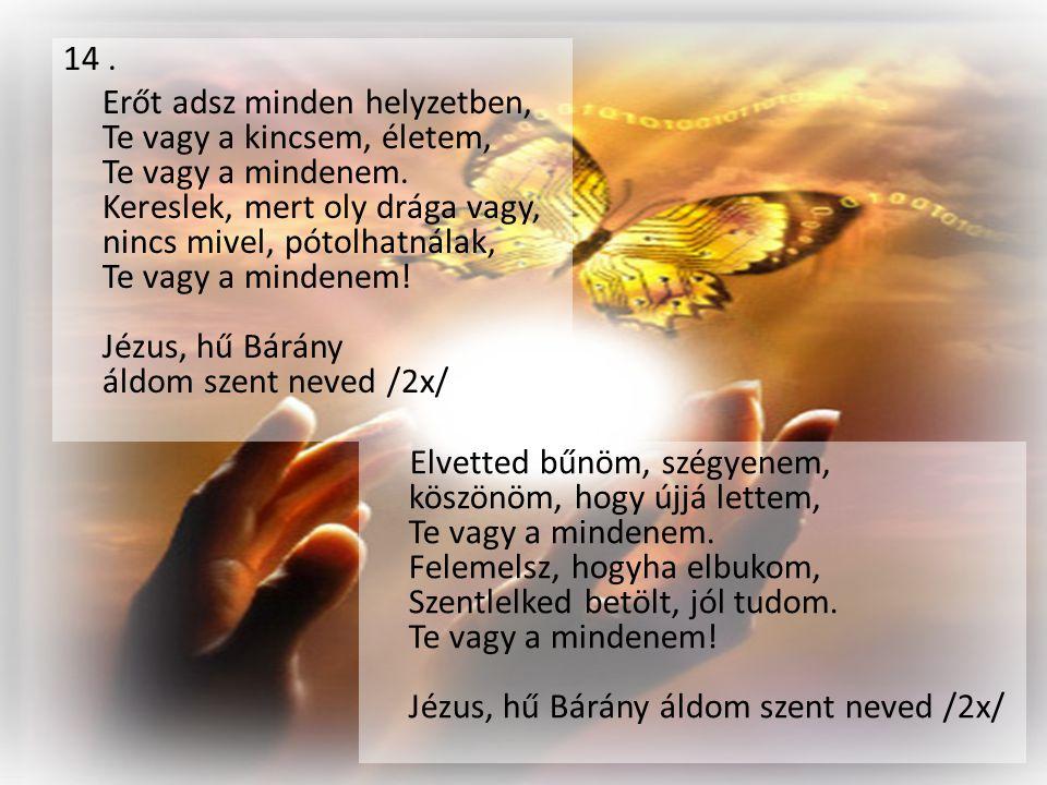 14 . Erőt adsz minden helyzetben, Te vagy a kincsem, életem, Te vagy a mindenem. Kereslek, mert oly drága vagy, nincs mivel, pótolhatnálak, Te vagy a mindenem! Jézus, hű Bárány áldom szent neved /2x/